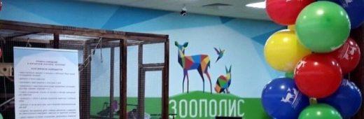 Открытие контактного зоопарка!
